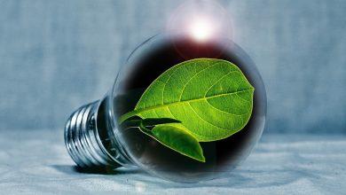 Photo of Energie besparen in en om huis