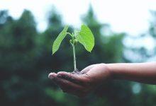 Photo of Redenen waarom je huis verduurzamen een juiste investering is